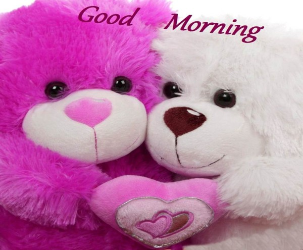 Good Morning With Teddy Image-wm1833