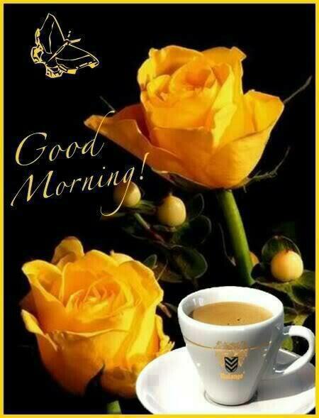 Good Morning - Yellow Flowers-wg017048