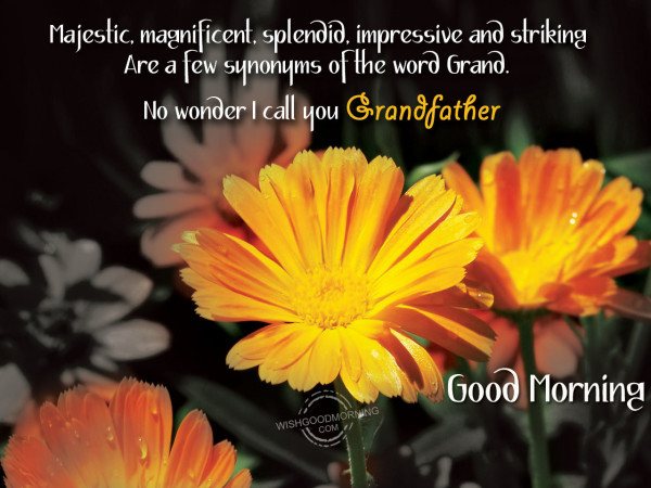 Grand Father Good Morning-wm2409