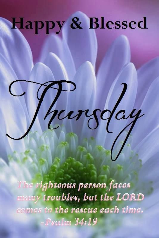 Good morning wishes on thursday pictures images happy and blessed thursday wg015049 m4hsunfo