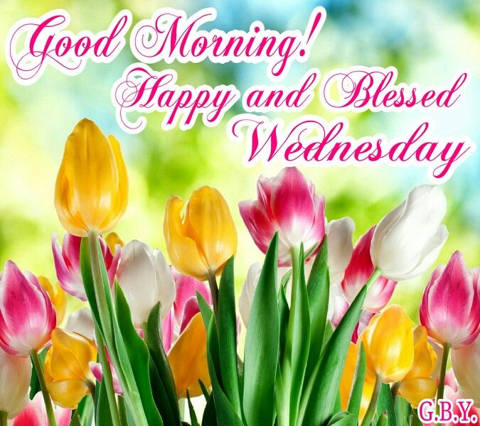 Good Morning Wishes On Wednesday Pictures Images Page 12