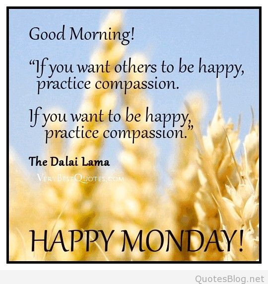 Happy Monday Good Morning-wg01010