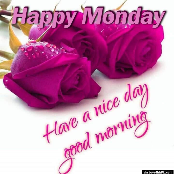 Good Morning Monday In French : Happy monday good morning