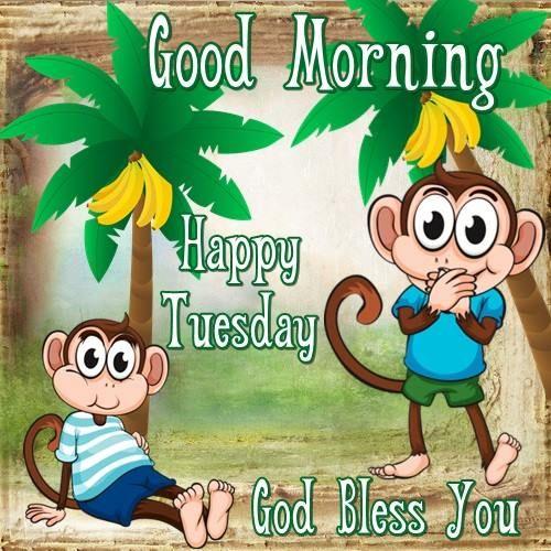 Happy Tuesday -wg25