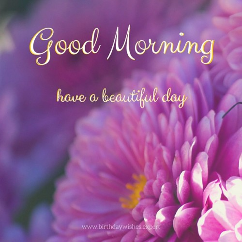Good Morning Sunshine Have A Beautiful Day : Have a beautiful day good morning
