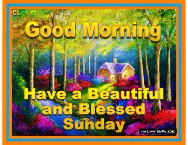 Have A Beutiful And Blessed Sunday !-wg01648