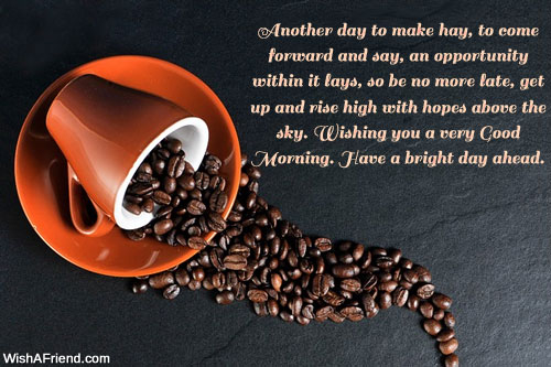 Have A Bright Day Ahead-wb0628