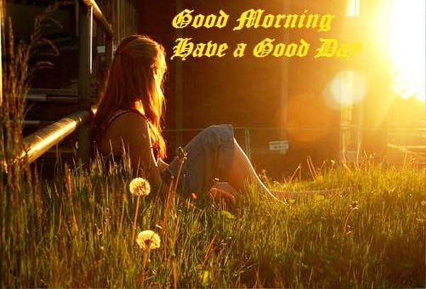 Have A Good Day Good Morning !-wg01359