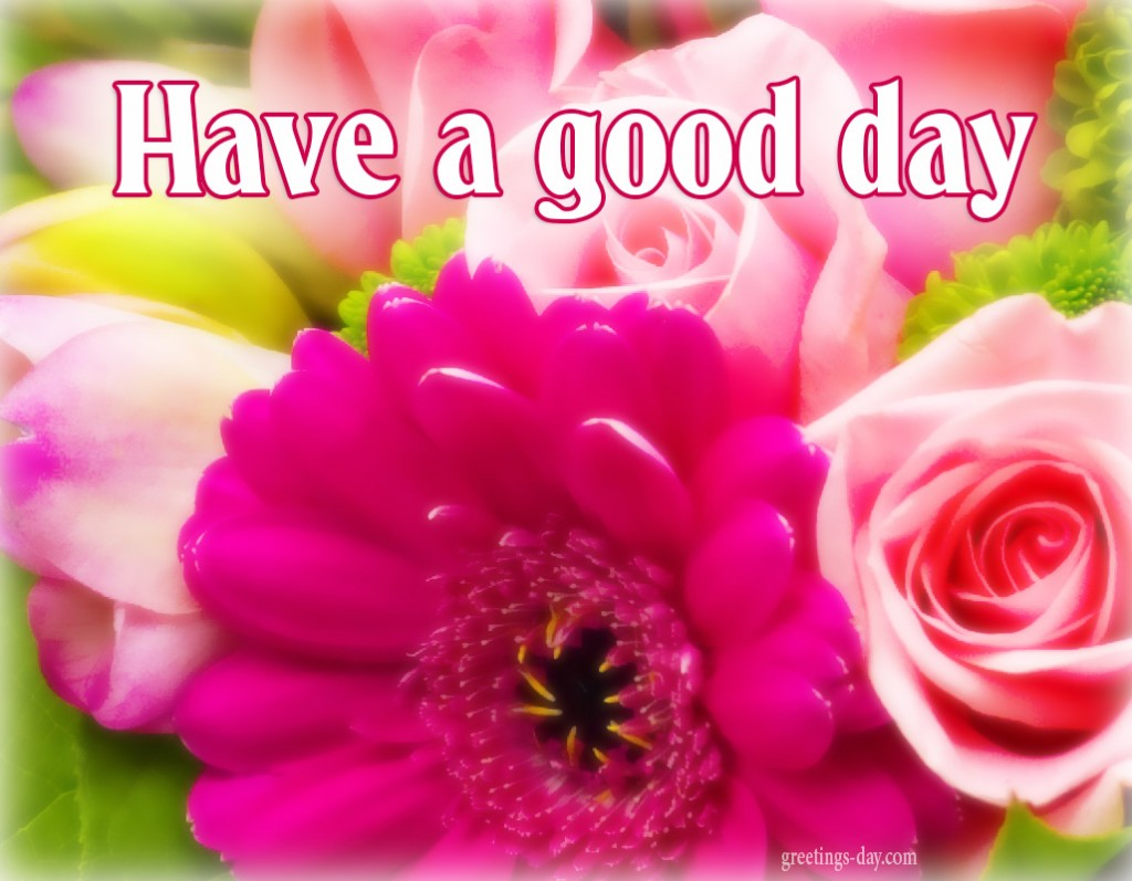 have a great day In britain, the variants have a fine day and have a good day are frequently used in place of have a nice day british customers generally consider it to be obnoxious and overbearing.