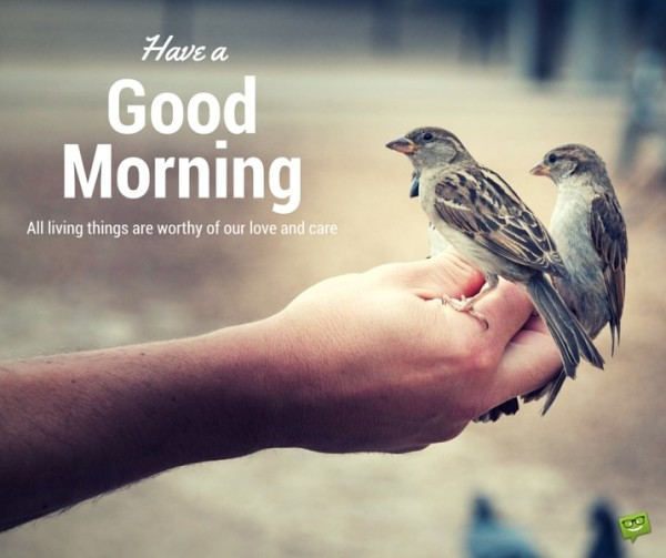 Have A Good Morning - All Liveing Things Are Worthy-wg017133