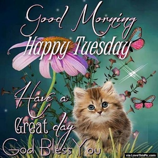 Have A Great Day - Happy Tuesday-wg01767