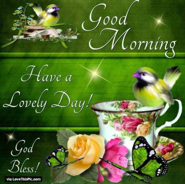 Have A Lovely Day-wg01656