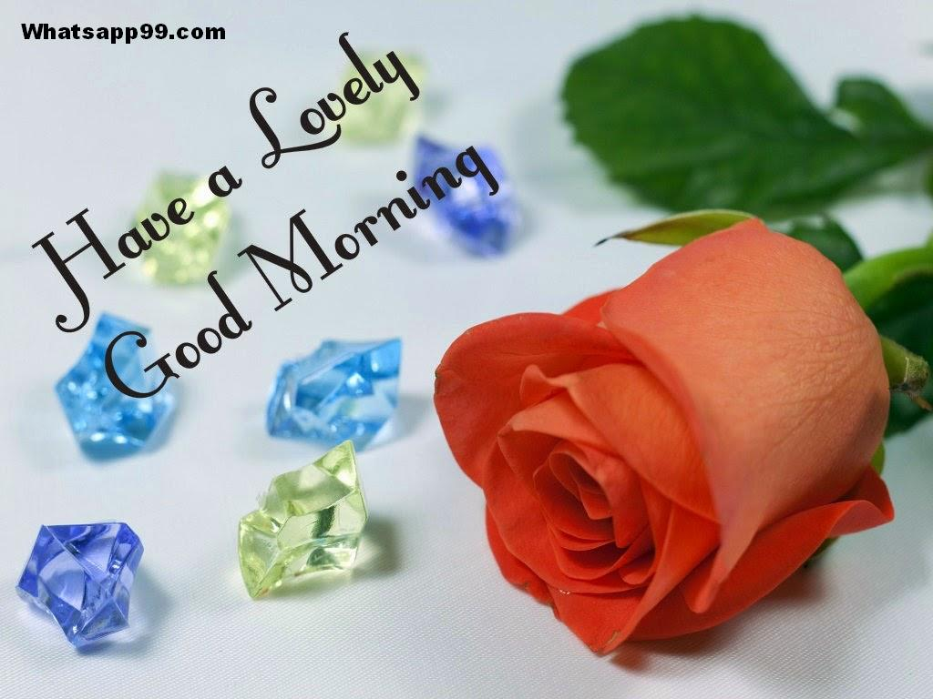 Good Morning Wishes With Flowers Pictures Images Page 53