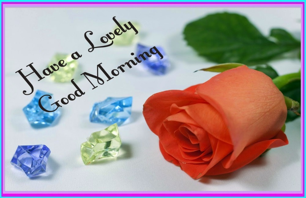 Good Morning Wishes With Flowers Pictures Images Page 41