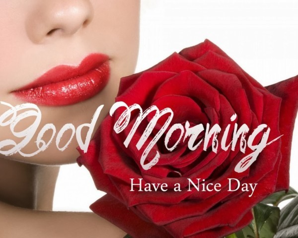 Have A Nice Day – Good Morning