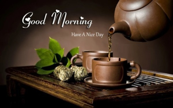 Have A Nice Day - Have Some Tea-wg015067