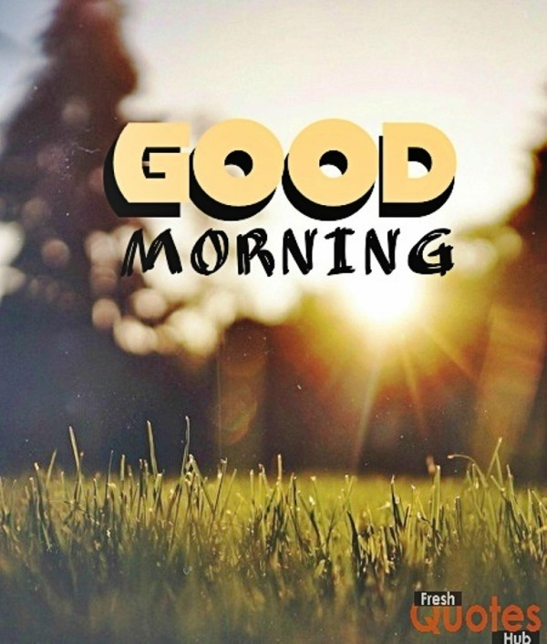 Natural Images Good Morning