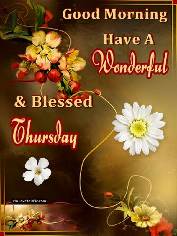 Have A Wonderful And Blessed Thursday-wg01659