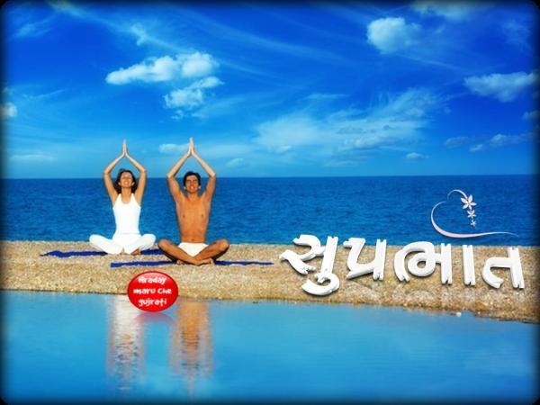 Have Fresh Suprabhlat-wm1009