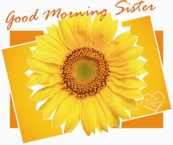 Have Good Morning Sister