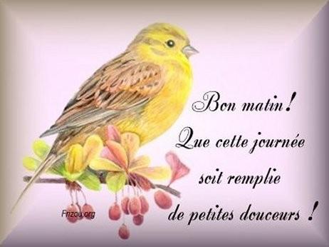 Have Nice Bon Matin Image