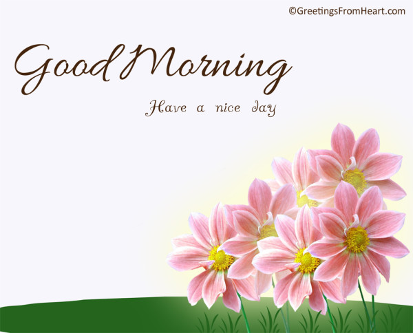 Have Nice Day - Good Morning !-wg017140