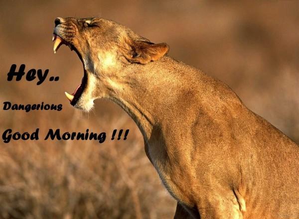 Hey Dangerious Good Morning-wg017144