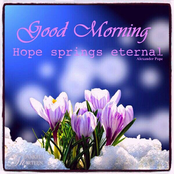 Hope Springs Eternal Good Morning-wg01772