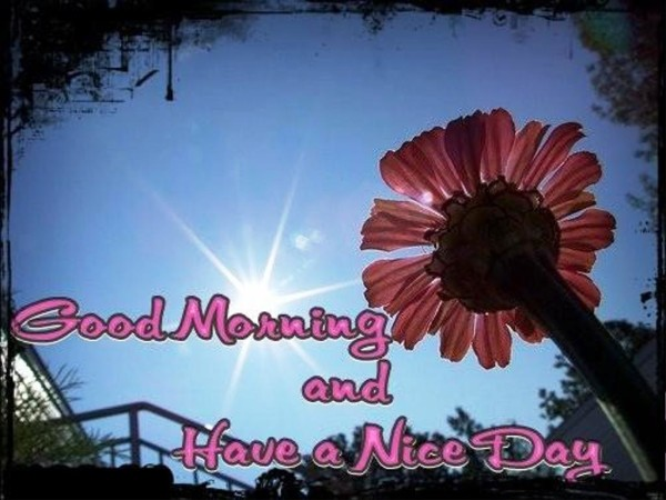 Hopr You Have The Best Day-Good Morning-wg01369