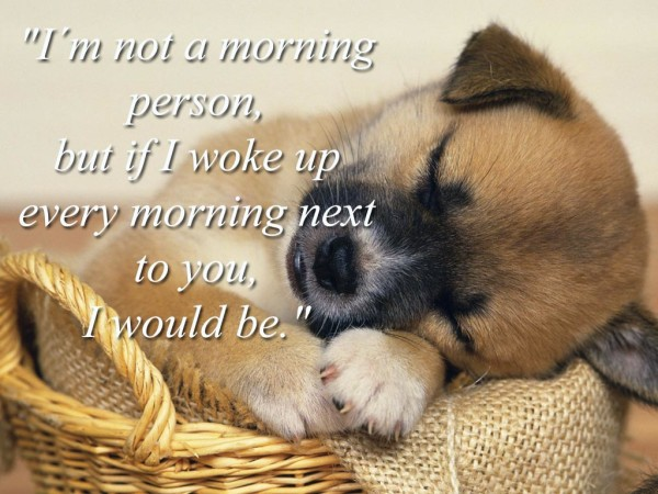 I Am Just Not A Morning Person-wg02