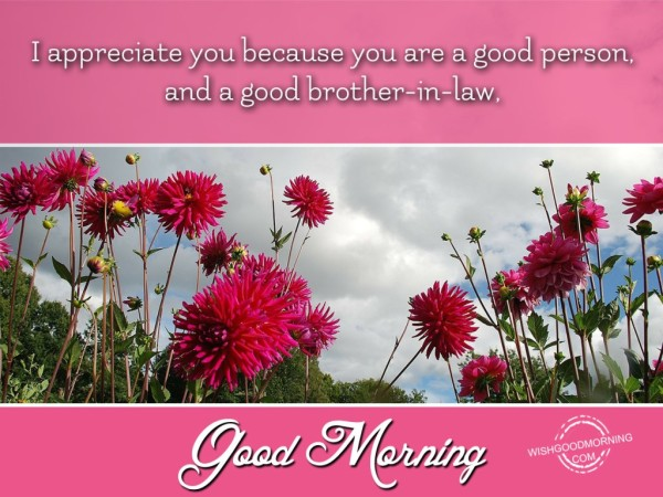 I Aprreciate You Good Morning-wm235