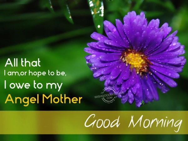 I Owe To My Angel Mother-Good Morning !-wg9509