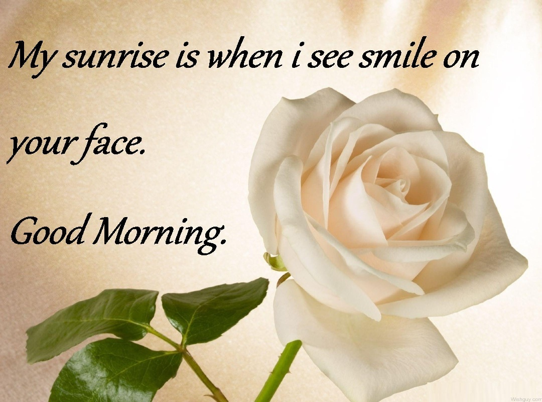 Good morning wishes with flowers pictures images page 62 i see smile on your face good morning dvf41 mightylinksfo