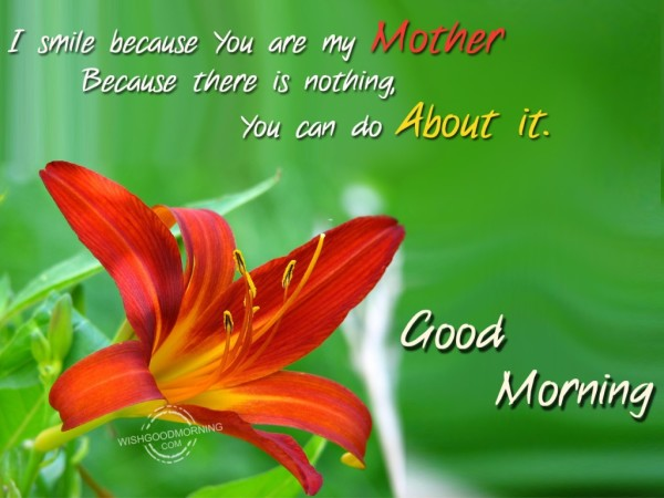 I Smile Because You Are My Mother-wg9510