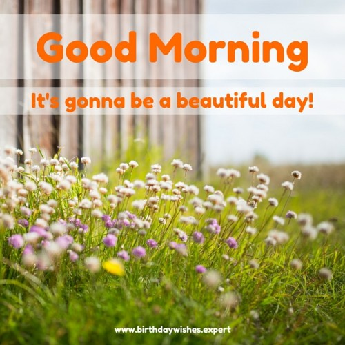 It Is Gonna Be A Beautiful Day !-wg01774