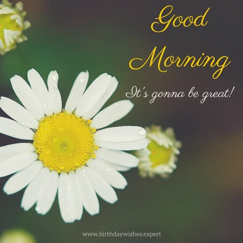 It Is Gonna Be Great Good Morning !
