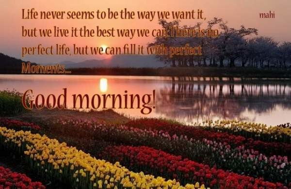 Life Never Seems To Be The Way - Good Morning-wg06514