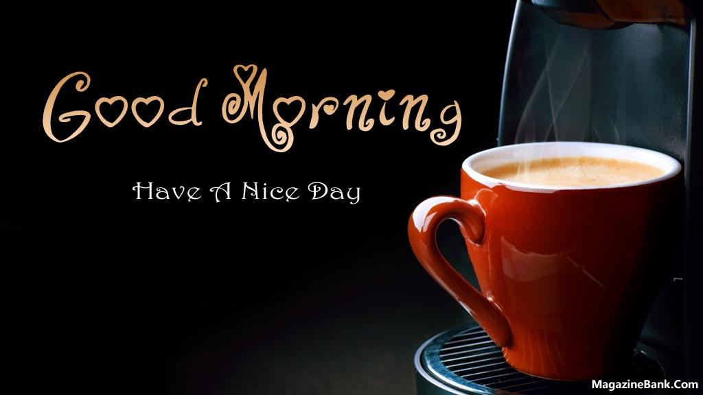 a nice day Have a nice day的中文意思:得意的一天,点击查查权威在线词典详细解释have a nice day的中文翻译,have a nice day的发音,音标,用法和例句等.