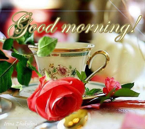 Lovely Morning-wg01532