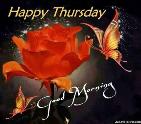 Lovely Thursday Morning Image-wg015087