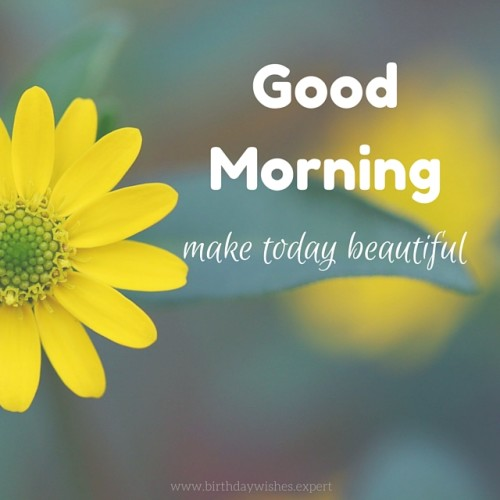 Make Today Beautiful - Good Morning-wg03418