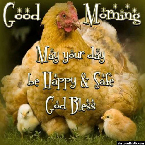 May Your Day Be Happy And Safe-wg01677