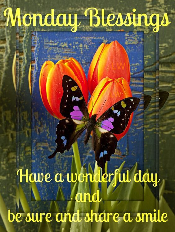 Monday Blessing - Have A Wonderful Day-wg6