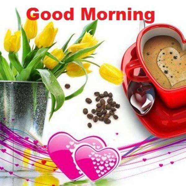 Morning Pic-wg015097
