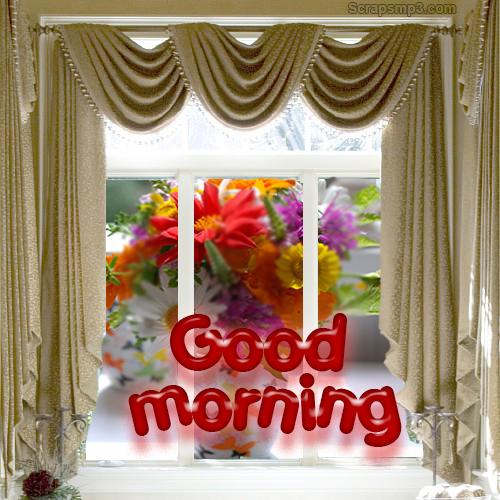 Morning !-wg017164