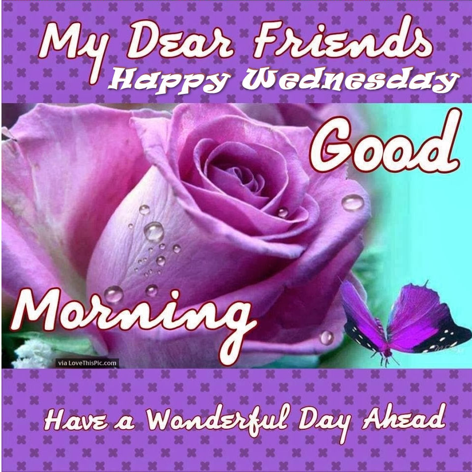 Good Morning Wishes On Wednesday Pictures Images