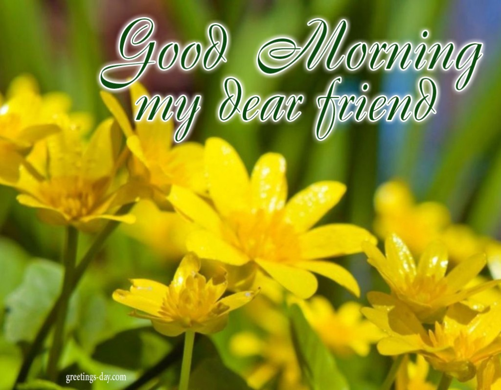 Good Morning All My Dear Friends : Good morning wishes for friend pictures images page