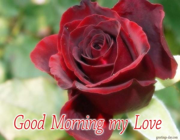 My Love A Very Happy Morning To U-wg0927