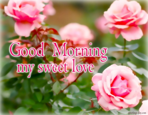 My Sweet Love-Good Morning-wg01102