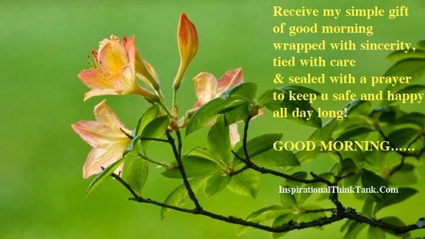 Receive My Simple Gift Of Good Morning-wg01016